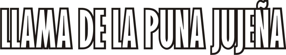llama_txt
